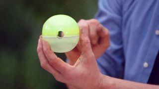 Capsulas de enraizamiento para reproducir plantas por acodo aéreo - Esferas