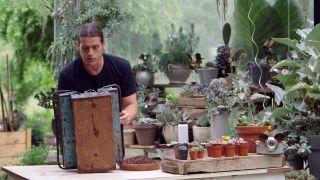 Composición de cactus en una caja de herramientas - Paso 1