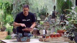 Composición de cactus en una caja de herramientas - Paso 2