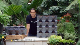 El origen de los jardines verticales