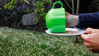 Cómo hacer un comedero de pájaros - Paso 8
