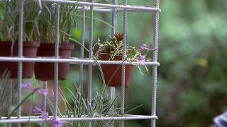 Plantación en macetero vertical - Detalle plantación