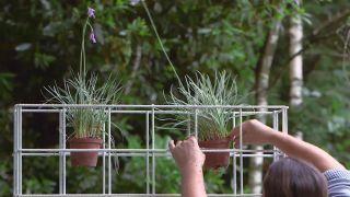 Plantación en macetero vertical - Inicio