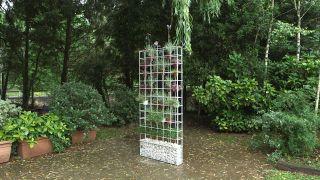 Plantación en macetero vertical