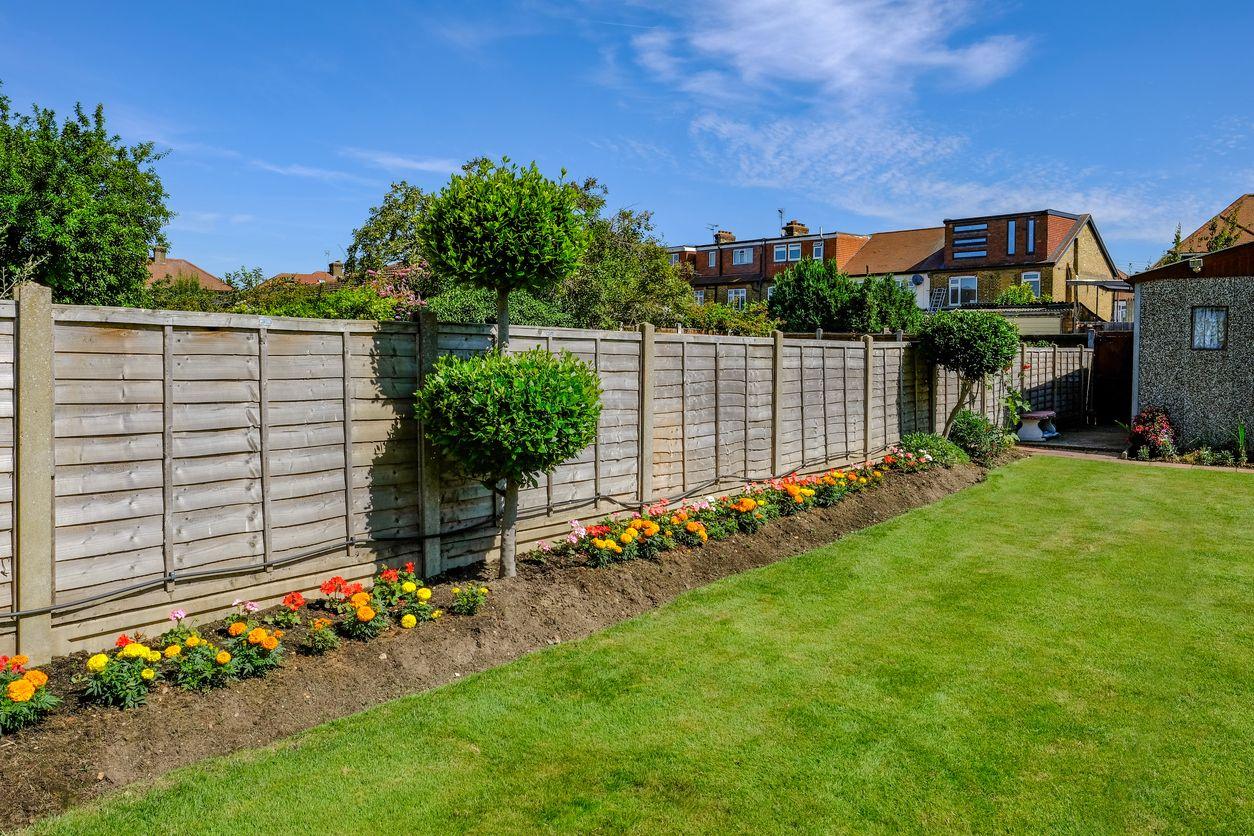Consejos y sugerencias para el cuidado del jardín en verano