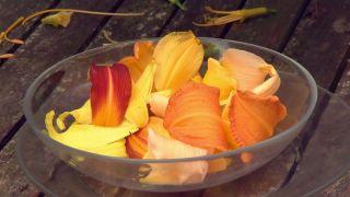 Hemerocallis en ensalada