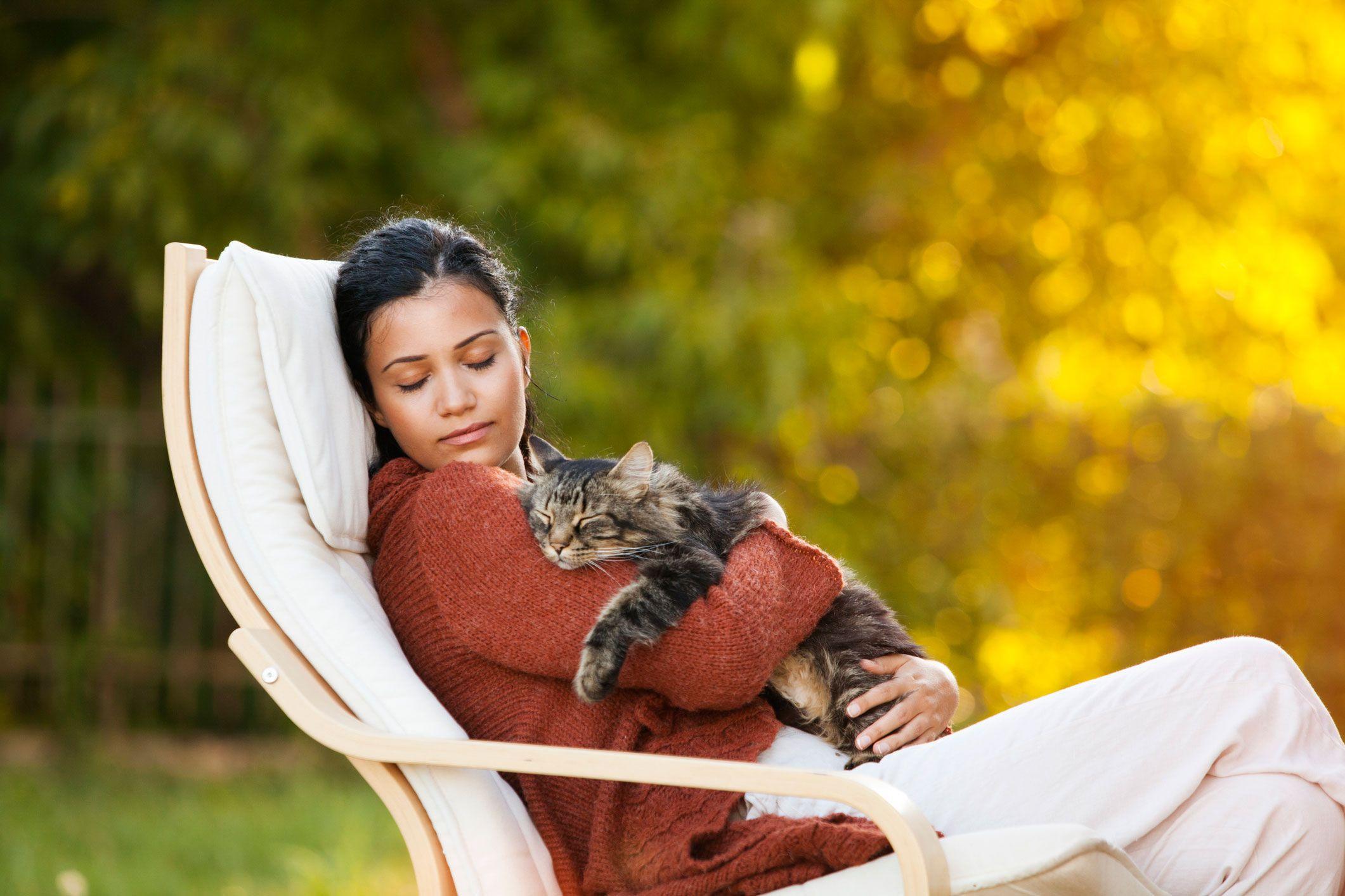 Dormir con el gato en verano
