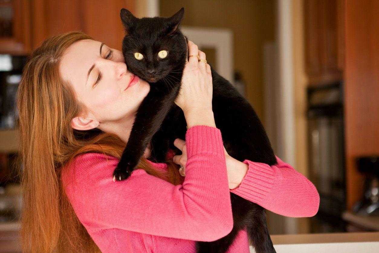 Los gatos negros son buenos compañeros de vida