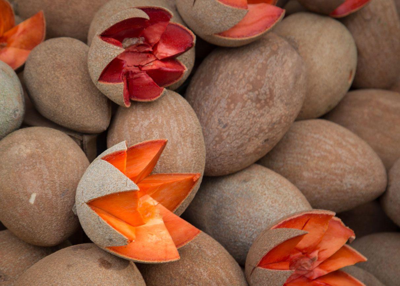 El zapote se utiliza mucho en belleza y cosmética