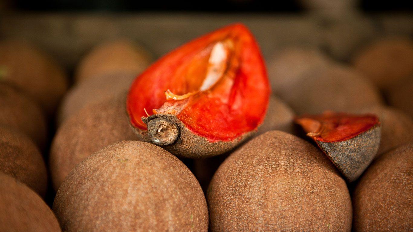 Zapote rojo (Pouteria Sapota)