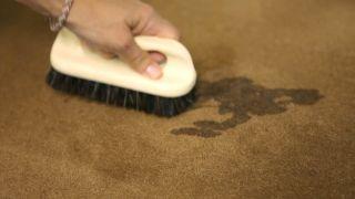 Cómo limpiar alfombras y moquetas - Paso 6