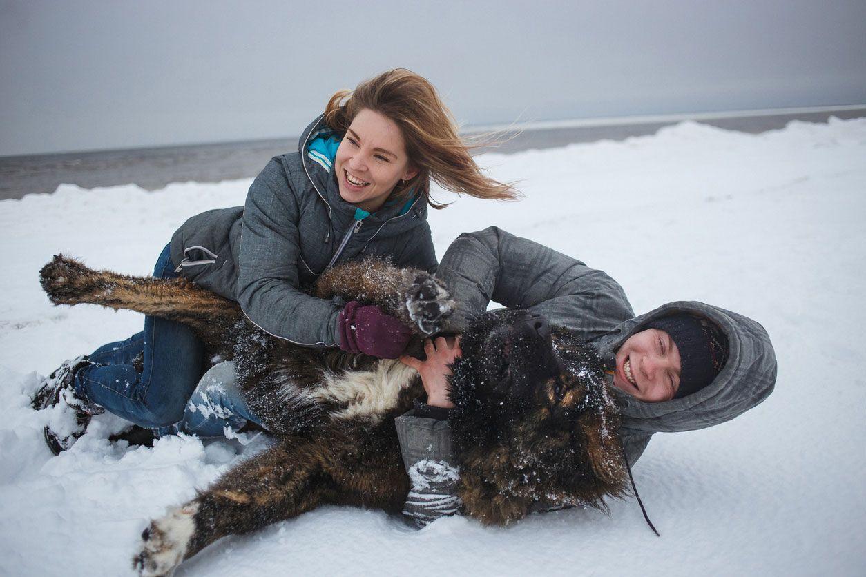 El Pastor del Cáucaso es un perro leal y fiel a su clan.