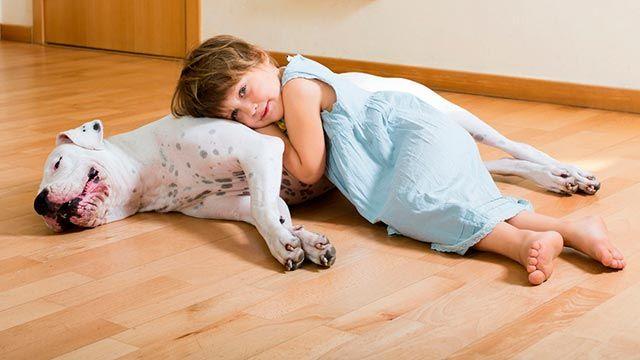 Los perros grandes son más protectores con los niños.