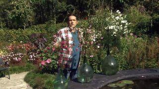 Anémona japónica o anémona híbrida - Centro floral con anémona