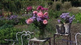 Parterre otoñal con plantas de flor de temporada - Composición floral