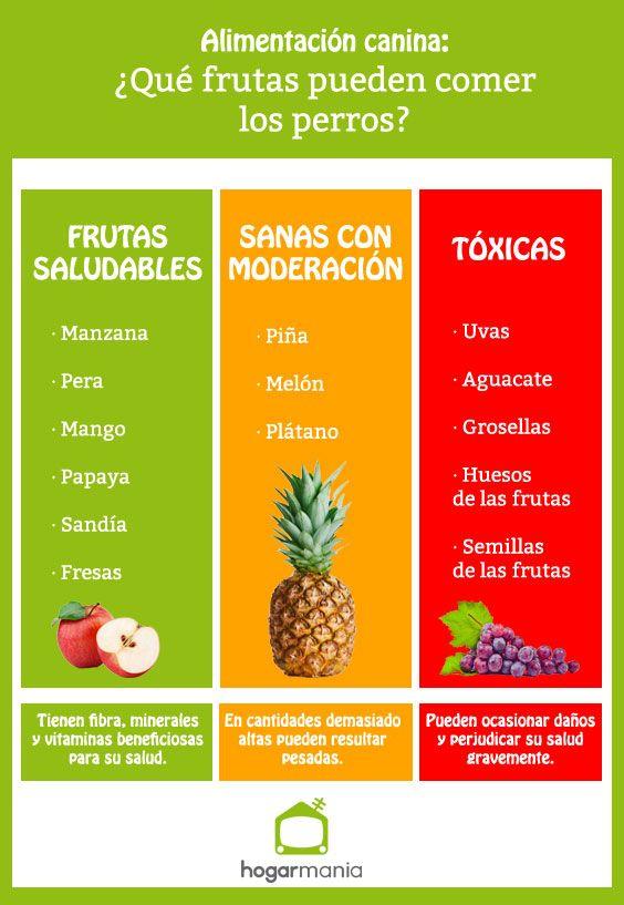 Frutas saludables para los perros.