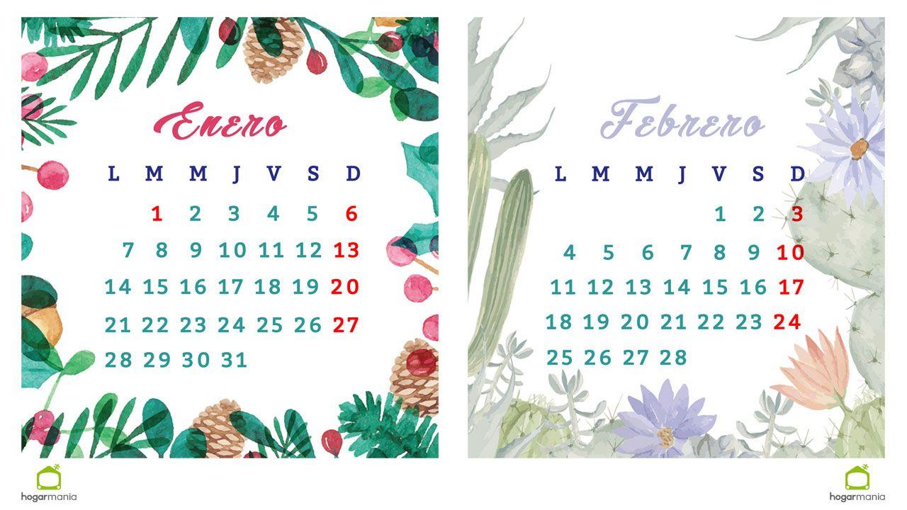 Enero Y Febrero 2019