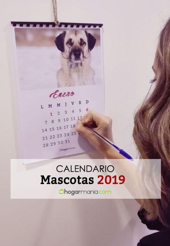 Calendario mascotas 2019