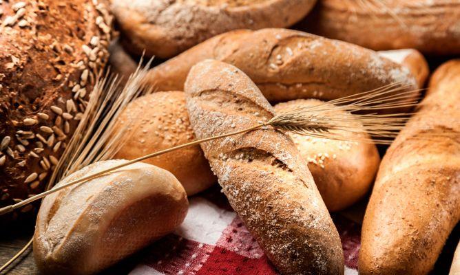 el pan integral engorda si o no