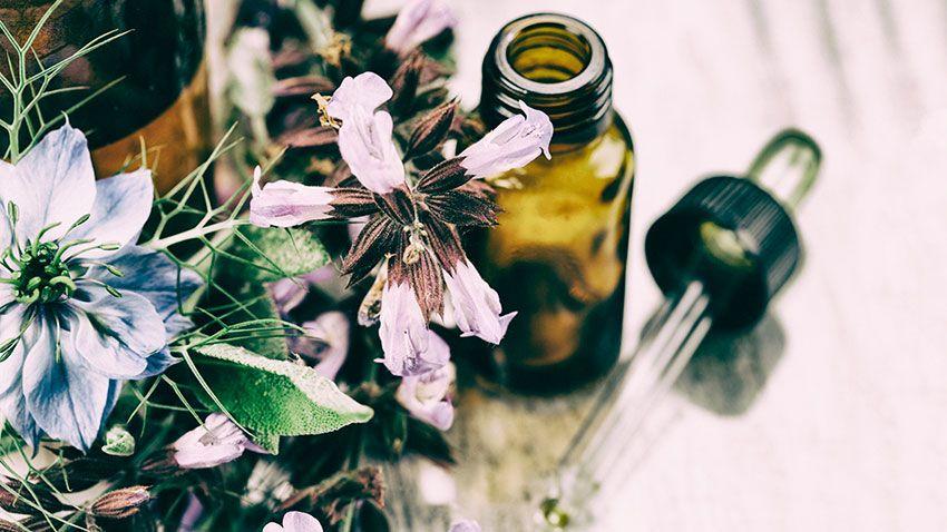 Los aceites esenciales, ricos en vitaminas y minerales, fortalecen el pelo y, hacen que crezca fuerte y sano.