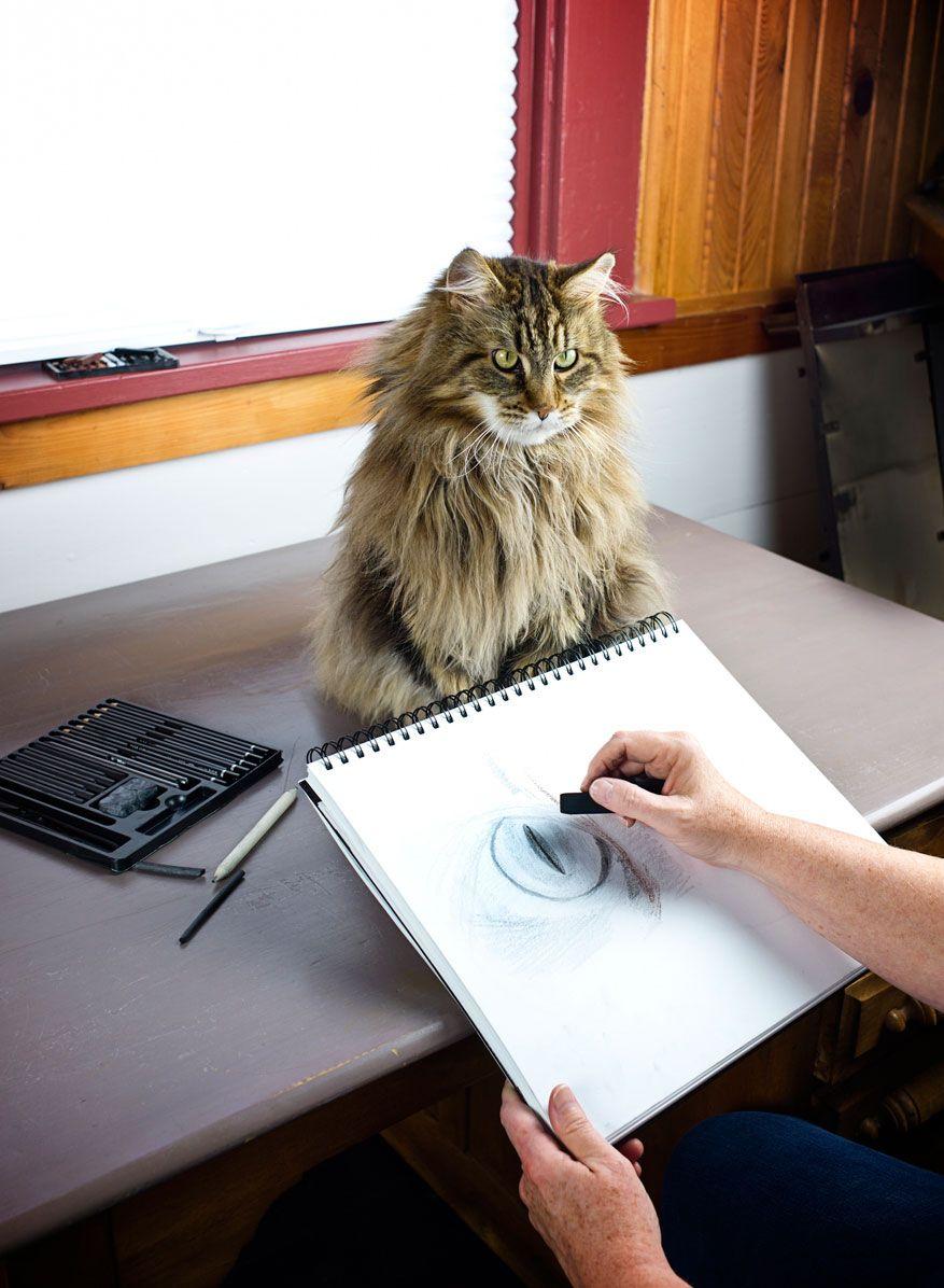 Cuaderno de sketch para pintar con carboncillo.