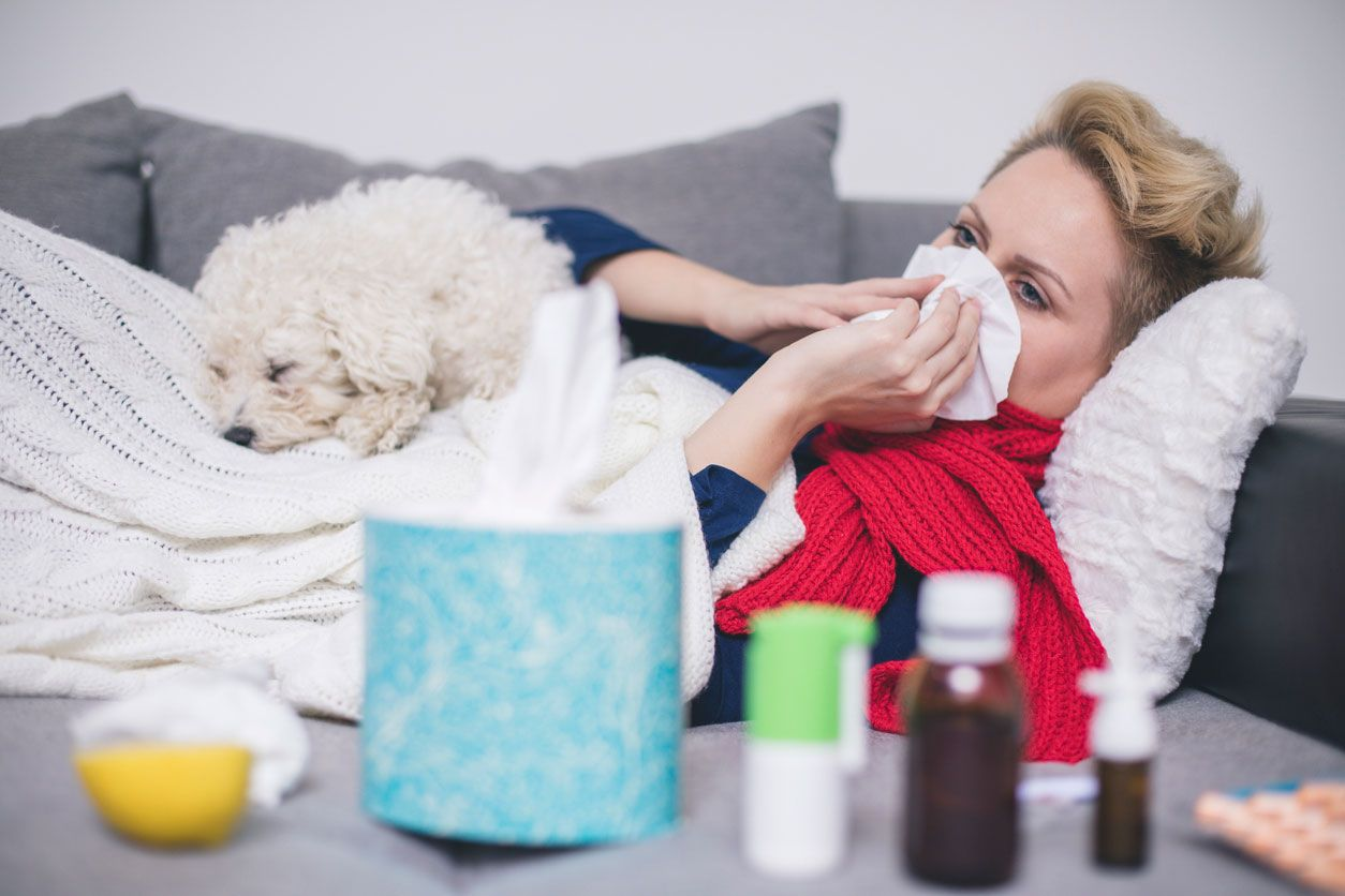 Contagiar resfriado al perro