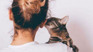 Beneficios del ronroneo de los gatos en las personas