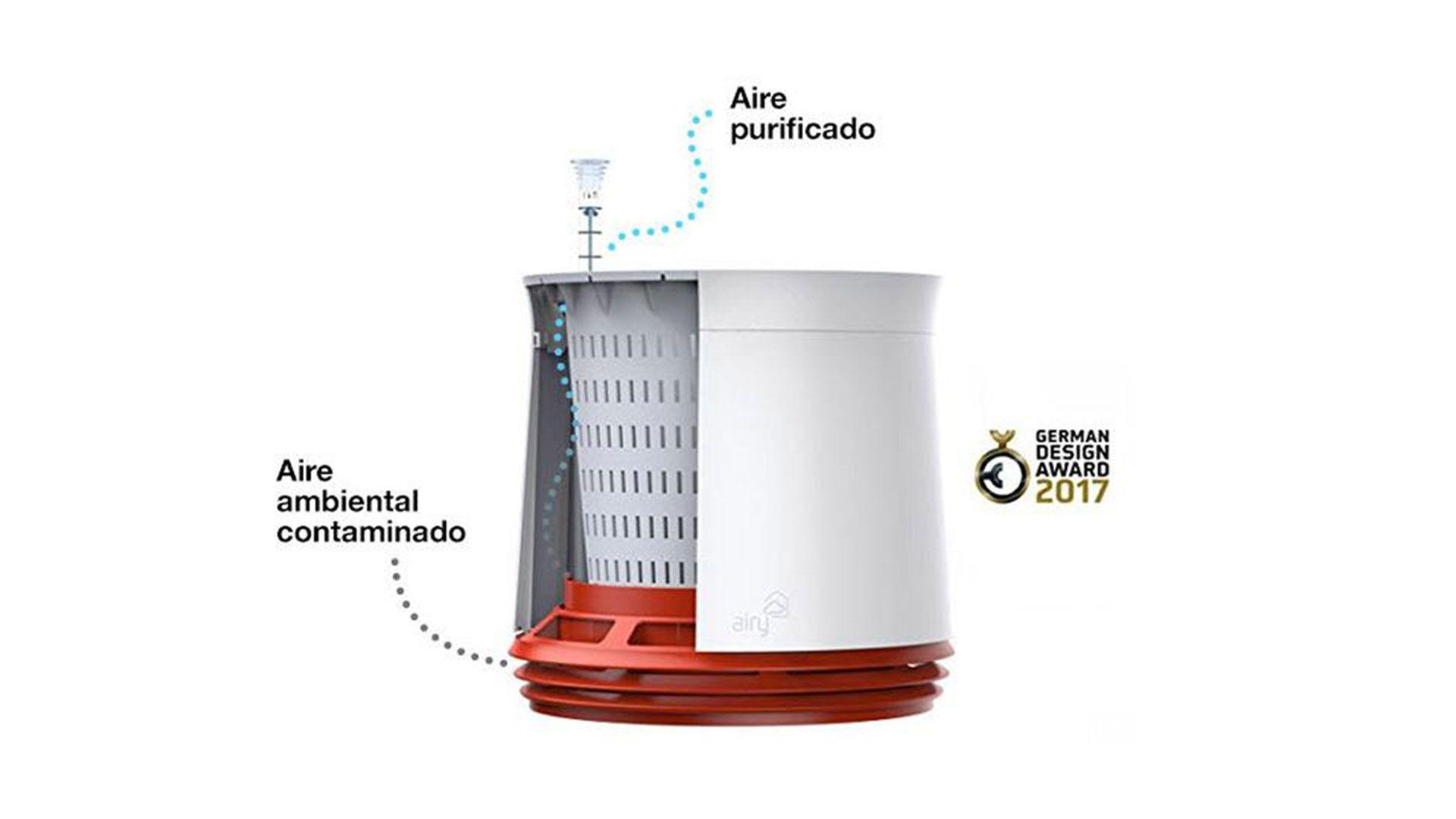 Plantas de interior contra la contaminación del hogar