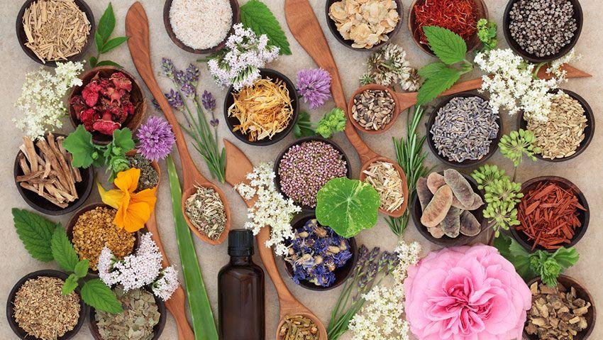 hierbas aromáticas secas