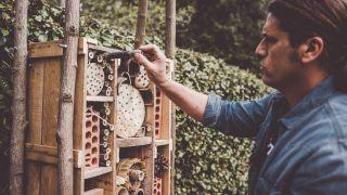 Hotel de insectos beneficios para la huerta
