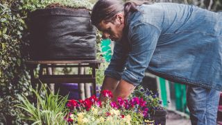 Cultivar plantas aromáticas en tiestos de fibra