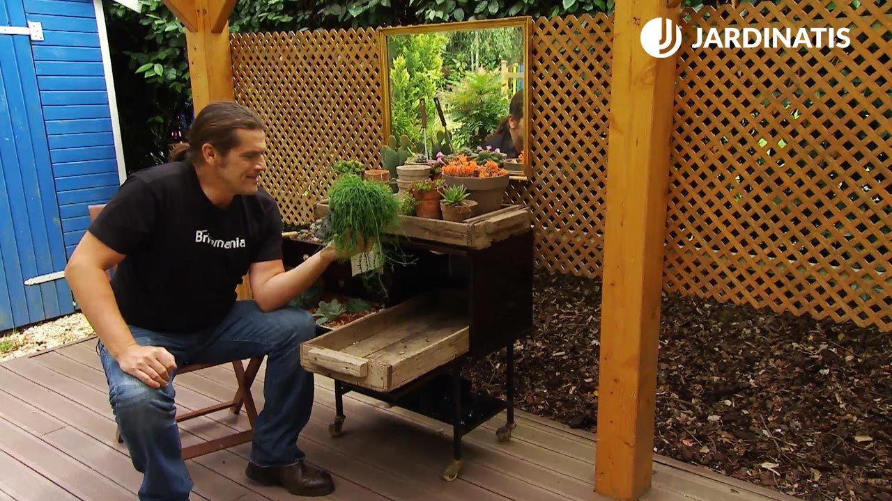 Mueble mini bar con plantas crasas y cactus