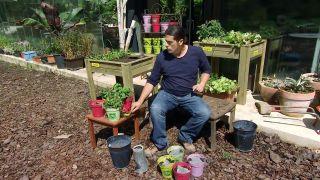 Kit para la siembra de hierbas aromáticas