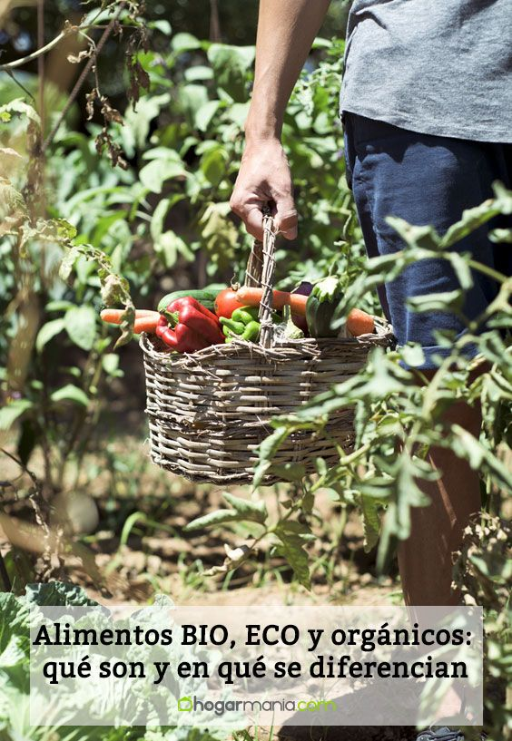 Alimentos BIO, ECO y orgánicos: qué son y en qué se diferencian