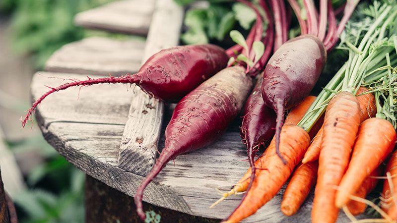 Vegetales de producción ecológica.