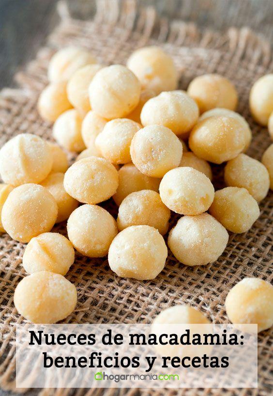 Nueces de macadamia: beneficios y recetas