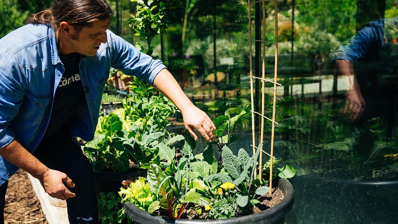 Nueva temporada de Jardinatis