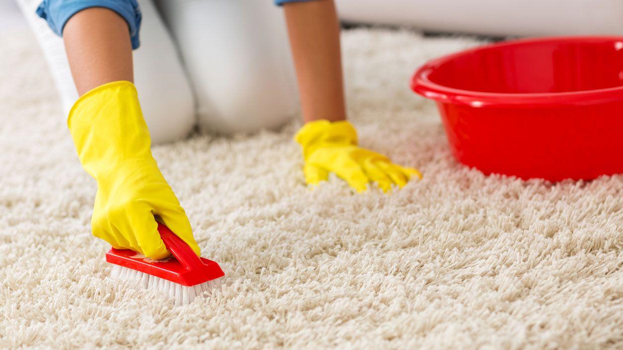 C mo limpiar las alfombras a fondo hogarmania - Como limpiar las alfombras en casa ...