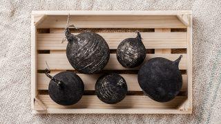 6 rábanos negros en una caja.
