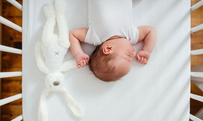 75a842817194 Cómo dormir a tu bebé: doudou o manta de apego - Hogarmania