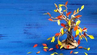 Cómo hacer un árbol de cartón