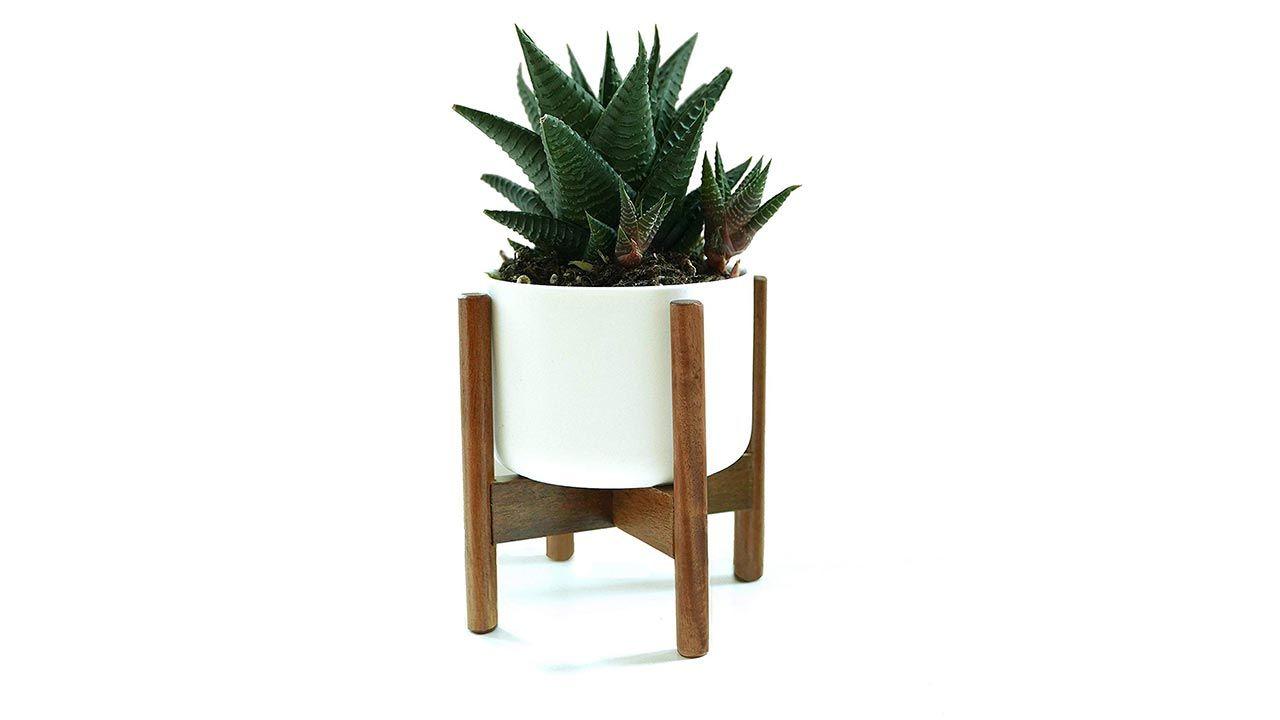 Maceta de cerámica blanca con soporte de madera