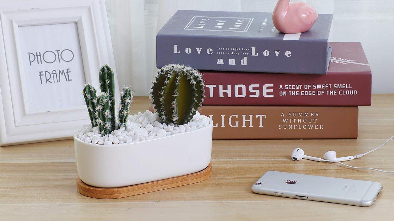 Macetas de cerámica de estilo minimalista.