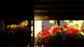 La luz exterior
