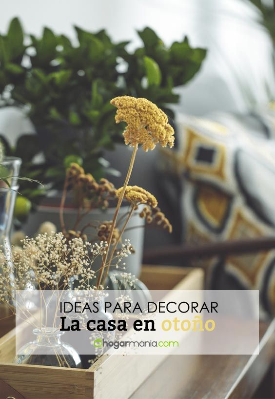Ideas para decorar la casa en otoño