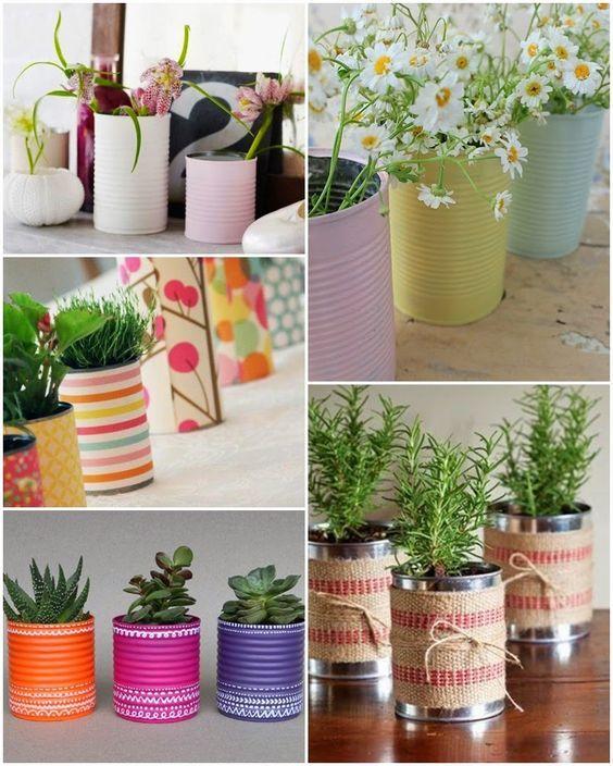 Plantas aromáticas en latas