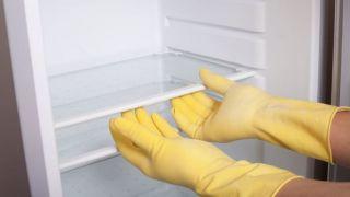Pasos a seguir para limpiar el congelador y la nevera