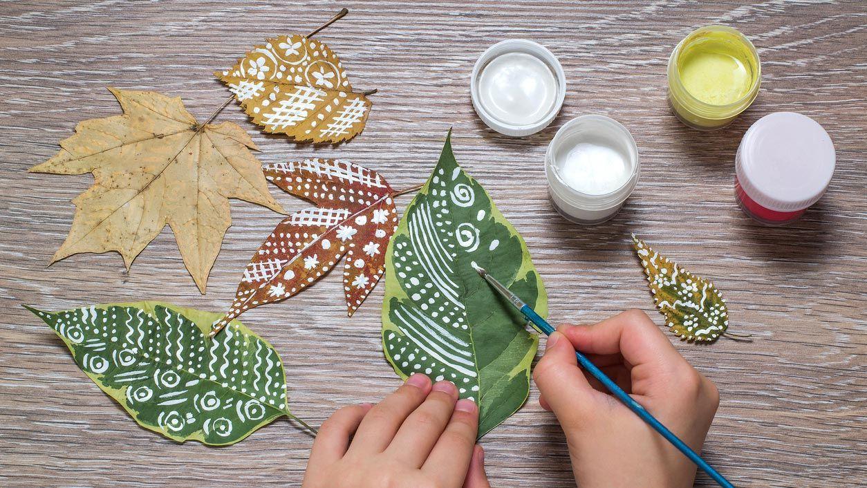 Mandalas en hojas secas