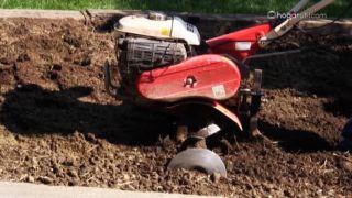 Remover la tierra de la huerta