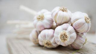 10 plantas medicinales imprescindibles en tu hogar - Ajo